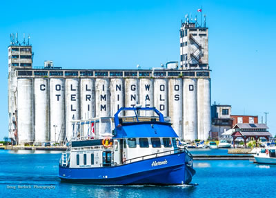 collingwood harbour tours